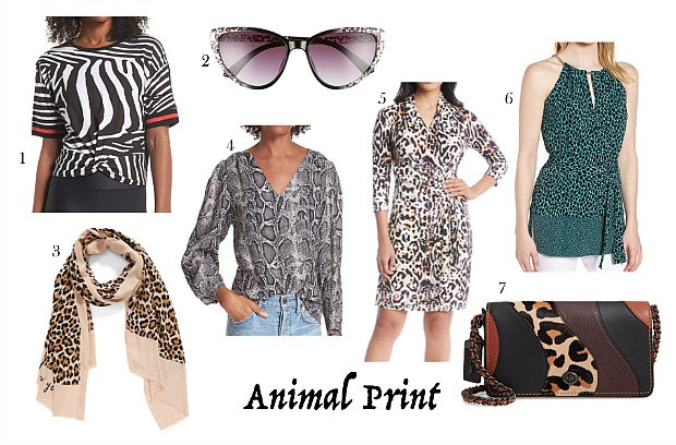Animal Print Clothes |10 Major Fashion Trends for Fall 2018 And Ways Women 40, 50 & 60 Can Wear Them | Styled by Fabulous After 40
